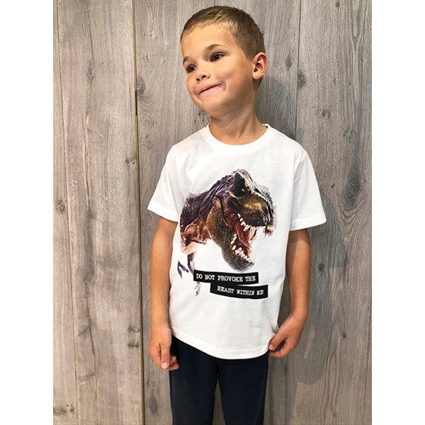 Kids Up, Dino t-paita