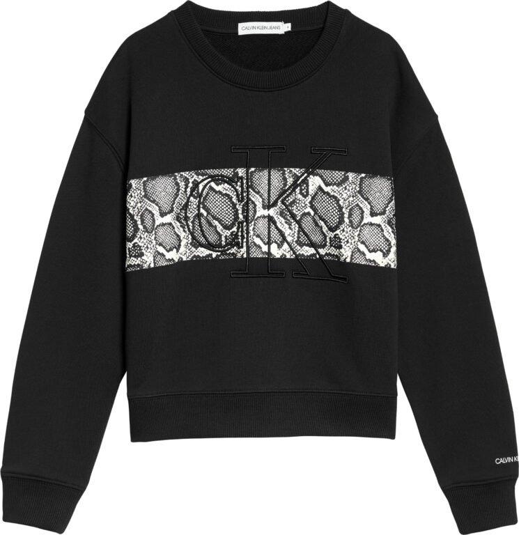 Calvin Klein, reptile skin block collegepusero
